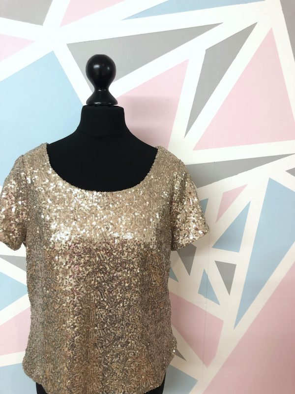 Sequin Top Dressmaking Kit